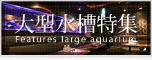 奈良アクアガーデンの大型水槽特集
