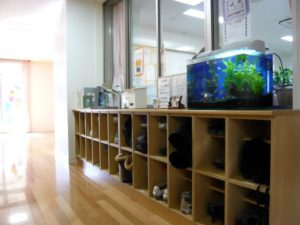 幼稚園様 場所を有効活用!よく見える水槽です