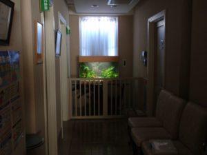 婦人科医院様 光を受けて美しく輝きます