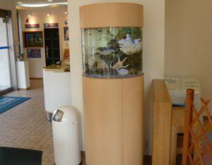 住宅展示場にて優しい雰囲気の海水魚水槽