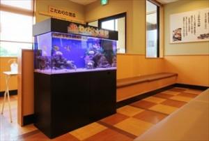 大手飲食チェーン店様 楽しいアクア空間です
