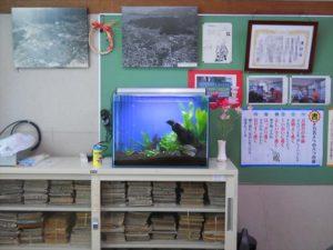 校長室の水槽がコミュニケーションのきっかけに